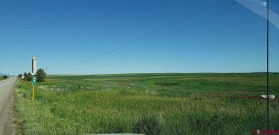 Dove Creek CO Farm For Sale: $94,584