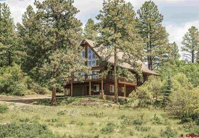 Pagosa Springs Single Family Home NEW: 628 Buck Drive