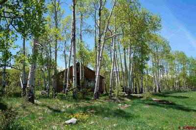 Gunnison County Single Family Home For Sale: 172 Kiowa Trail
