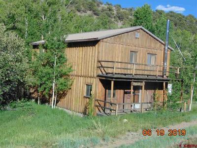 Del Norte Single Family Home For Sale: 401 Yund Drive