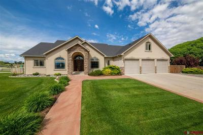 Montrose Single Family Home UC/Contingent/Call LB: 1822 Otter Pond Circle
