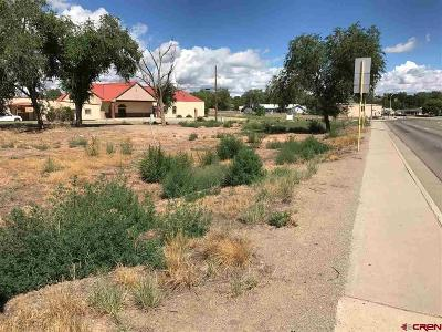 Cortez Residential Lots & Land For Sale: 510 N Dolores Road