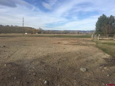 Montrose CO Residential Lots & Land For Sale: $49,950