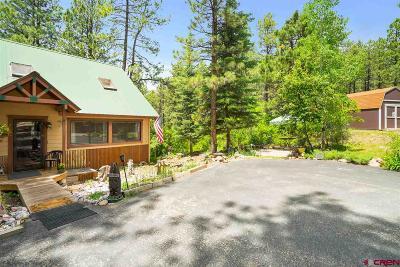 La Plata County Single Family Home For Sale: 315 Ridge Top Circle
