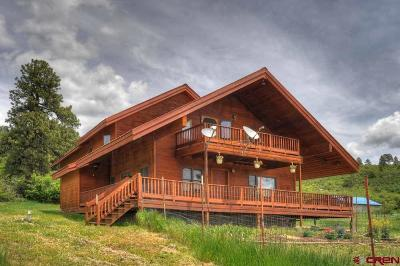 La Plata County Single Family Home For Sale: 321 Pine Spring Drive
