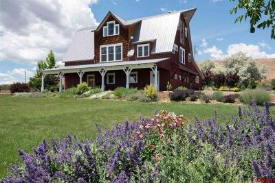 Montrose Single Family Home For Sale: 57848 Kiowa Road