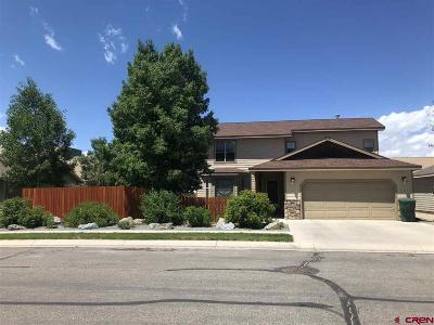 Gunnison Single Family Home For Sale: 813 Sunny Slope Drive