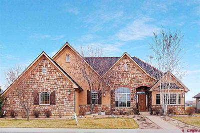 Montrose Single Family Home NEW: 1000 Black Canyon Way