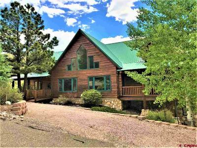 South Fork CO Single Family Home For Sale: $599,000