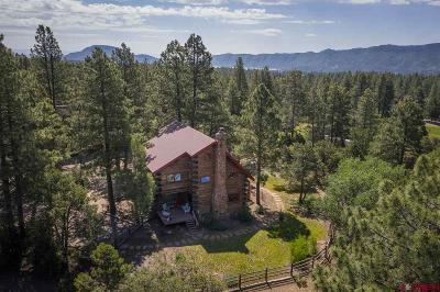 Durango Single Family Home For Sale: 190 Lower Road