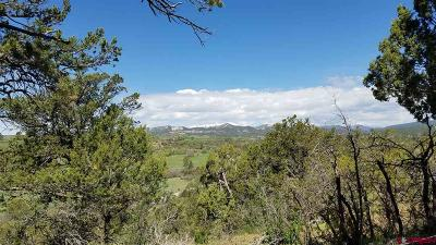 Durango Residential Lots & Land For Sale: E Pioneer Drive