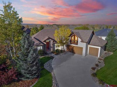Montrose Single Family Home For Sale: 3808 Mount Hayden Drive