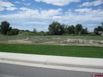 Delta Residential Lots & Land For Sale: Valley View Dr - Lot 4