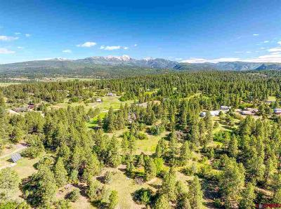 Durango Residential Lots & Land For Sale: Ridge Rd/Cr 142