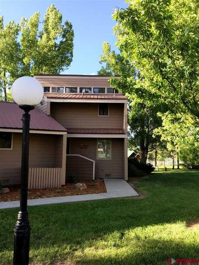 Pagosa Springs Condo/Townhouse UC/Contingent/Call LB: 33 Davis Cup Drive #4004