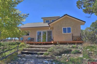 Single Family Home For Sale: 1918 Black Canyon Road
