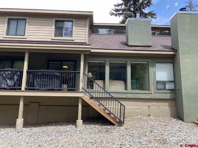 La Plata County Condo/Townhouse For Sale: 460 Sheol Street #11