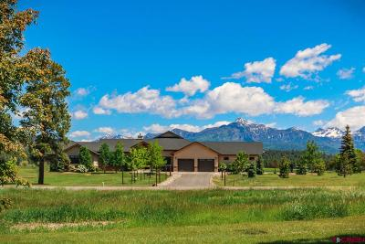 Pagosa Springs CO Single Family Home NEW: $975,000