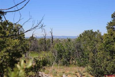 Durango Residential Lots & Land For Sale: 234 D Bar K Drive