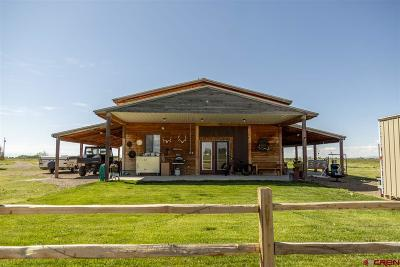 Monte Vista Single Family Home For Sale: 2459 S County Rd 1 E