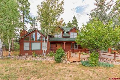 Durango CO Single Family Home NEW: $875,000