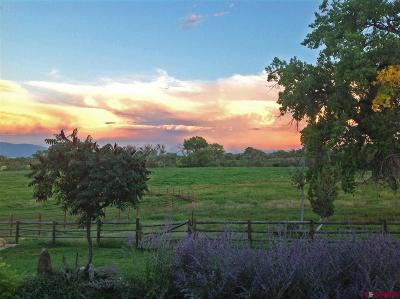 Montrose CO Farm NEW: $2,950,000