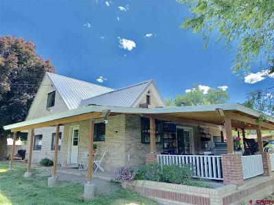 Paonia Single Family Home For Sale