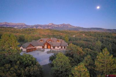 Pagosa Springs CO Single Family Home NEW: $1,175,000
