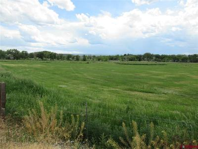 Montrose CO Residential Lots & Land NEW: $1,140,200