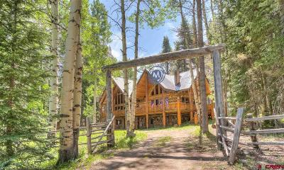 Gunnison County Single Family Home For Sale: 1466 Sioux Road