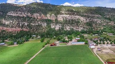 Durango CO Farm NEW: $4,999,000