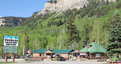 Durango CO Commercial NEW: $2,199,000