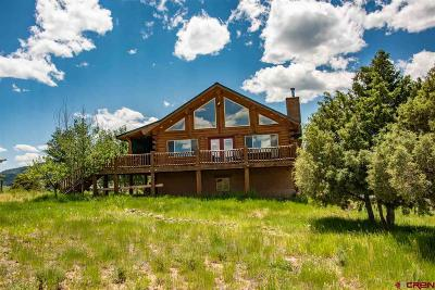 Pagosa Springs Single Family Home For Sale: 2439 County Road 359