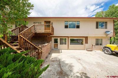 Montrose Single Family Home For Sale: 60919 Gunnison Road