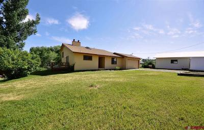 Paonia Single Family Home For Sale: 39572 Pitkin Road