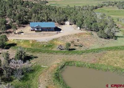 Ignacio Single Family Home For Sale: 110 Happy Valley