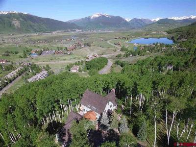 Crested Butte Single Family Home For Sale: 702 Forest Lane