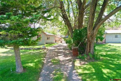Montrose Single Family Home UC/Contingent/Call LB: 17730 Paradox Trail