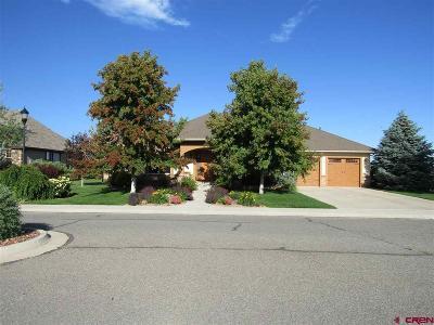 Montrose Single Family Home For Sale: 3932 Grand Mesa Drive