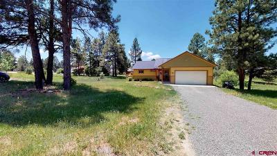 Pagosa Springs Single Family Home For Sale: 274 Sundown Circle