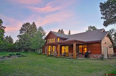 Ouray County Single Family Home For Sale: 88 Puma Lane