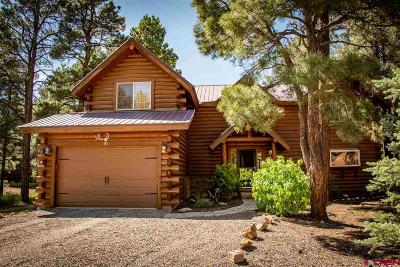Pagosa Springs Single Family Home For Sale: 90 Redwood Drive
