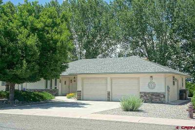 Montrose Single Family Home UC/Contingent/Call LB: 915 Heather Lane