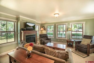 Crested Butte Single Family Home For Sale: 330 Sopris Avenue