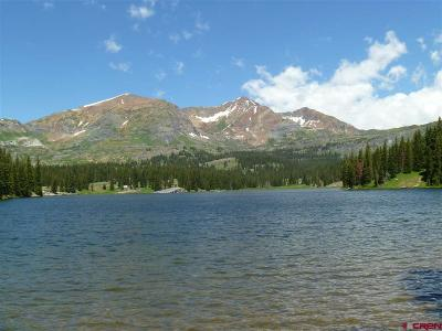 Crested Butte Residential Lots & Land For Sale: Ruby Silver Road