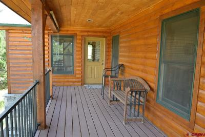 Mancos Single Family Home For Sale: 10511 Road 35