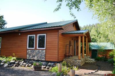 Pagosa Springs Single Family Home For Sale: 93 Monkshood Drive
