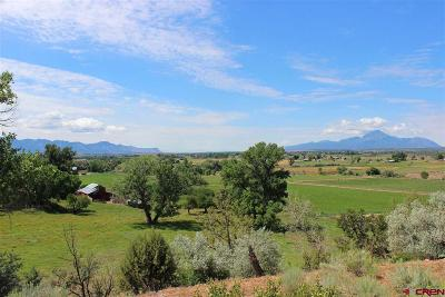 Dolores Residential Lots & Land UC/Contingent/Call LB: 25453 Road P