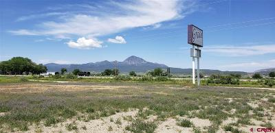 Cortez Commercial For Sale: 6176 Highway 160/491