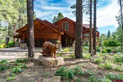 Pagosa Springs Single Family Home For Sale: 872 Phantom Ranch Place